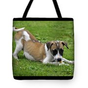 The Little One Tote Bag