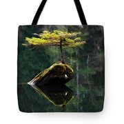 The Little Tree On Fairy Lake 5 Tote Bag