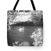 The Lone Swan 1 Tote Bag by Brian Hale