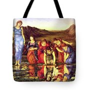 The Mirror Of Venus 1875 Tote Bag