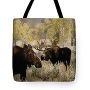 The Moose Rut Tote Bag