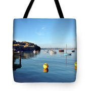 The Mylor Dolphin Tote Bag