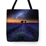 The Rise Of Dawn Tote Bag