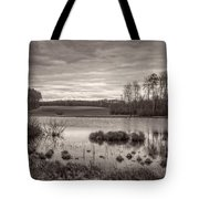 The Seeli-pond Tote Bag by Bernd Laeschke