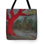 The Three Primary Colors Are The Unchanging Center Of The Stories Tote Bag