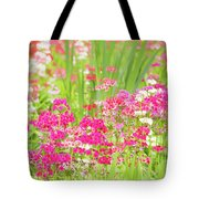 The World Laughs In Flowers - Primula Tote Bag