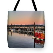 Theodore Roosevelt Memorial Park At Sunset Tote Bag by Jeff Breiman