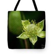 Thimbleweed Flower Tote Bag