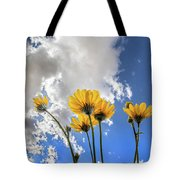 Things Are Looking Up - Wide Format Tote Bag