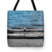 Three Gulls On A Log Tote Bag
