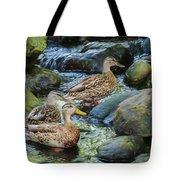 Three Mallard Ducks Swimming In A Stone Filled Brook. Tote Bag