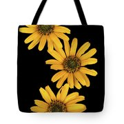 Three Sunflowers Tote Bag by Jeff Phillippi