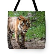 Tiger On A Stroll Tote Bag