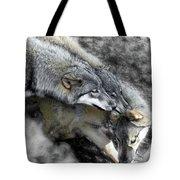 Timber Wolves Up Close Tote Bag