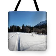 Tire Tracks In Snow In An Isolated Area Of The Kenai Peninsula Tote Bag