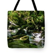 Torc Waterfalls Two Tote Bag