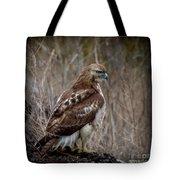 Totem Animal Book Hawk Tote Bag