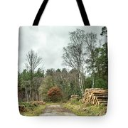 Track Through The Wood Tote Bag by Nick Bywater
