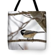 Tranquil Winter Chickadee Tote Bag