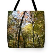 Transitioning Merwin Canopy Tote Bag by Dylan Punke