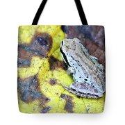Tree Frog On Yellow Leaf Tote Bag
