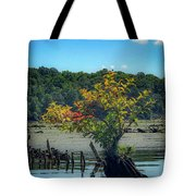 Tree In Mallows Bay Tote Bag