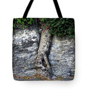 Tree In Stone Tote Bag