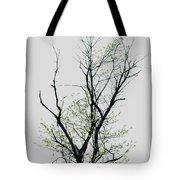 Tree Series Five Tote Bag