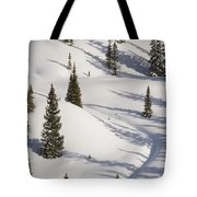 Trees And Shadows Tote Bag