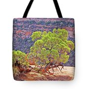 Trees Plateau Valley Colorado National Monument 2871 Tote Bag