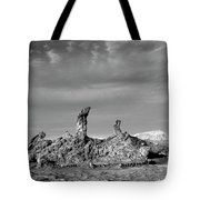 Tres Marias Black And White Moon Valley Chile Tote Bag