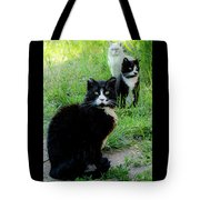 Trio In The Grass Tote Bag