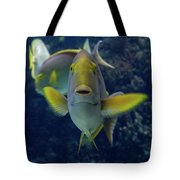 Tropical Fish Poses. Tote Bag
