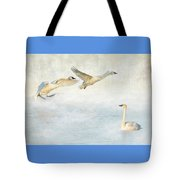 Trumpeter Swans - Don't Land On Me Tote Bag