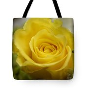 Try A Little Tenderness Tote Bag
