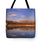 Tufa Shores At Dawn Tote Bag by Sean Sarsfield