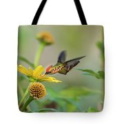 Tufted Coquette Feeds On Sunflowers Tote Bag by Rachel Lee Young