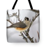 Tufted Titmouse Winter Tranquility Tote Bag