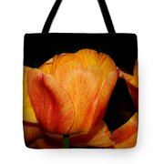Tulips On A Black Background Tote Bag