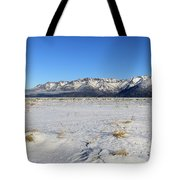 Turnagain Arm And Chugach Range From Hope Alaska Tote Bag