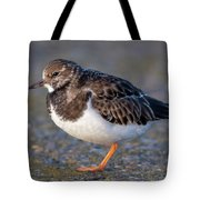 Turnstone Tote Bag
