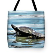Turtles - Mother And Child Tote Bag