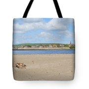 Tweed Estuary To Berwick-upon-tweed Medieval City Walls, Bridges Tote Bag