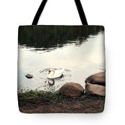 Twilight Swan Tote Bag