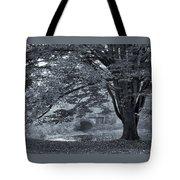 Twin Lake Mist Tote Bag