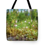 Twinflower Forest Tote Bag