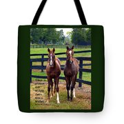 Two Friends With Proverbs 18 Vs 24 Tote Bag