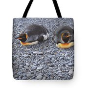 Two King Penguins By Alan M Hunt Tote Bag