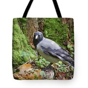Under The Oak Tree. Hooded Crow Tote Bag