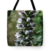 Up A Hill Tote Bag